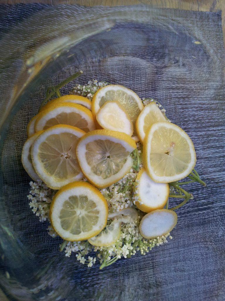 Holunderblüten und Zitronen für Holunderblütensirup geschichtet